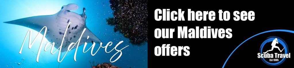 Scuba Travel, Dive Show Specials, maldives