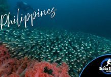 Scuba Travel, Philippines, Dive Shoe Specials