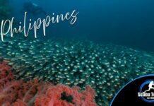 Scuba Travel, Philippines, Dive Shoe Specials