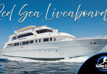 Scuba Travel, Red Sea, Liveaboards, Dive Show Deals