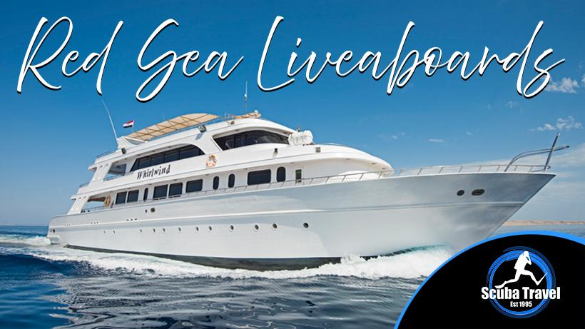 Scuba Travel, Red Sea, Liveaboards, Dive Show Deals