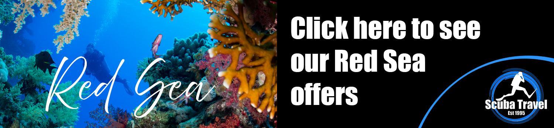 Scuba Travel, Red Sea, Offers