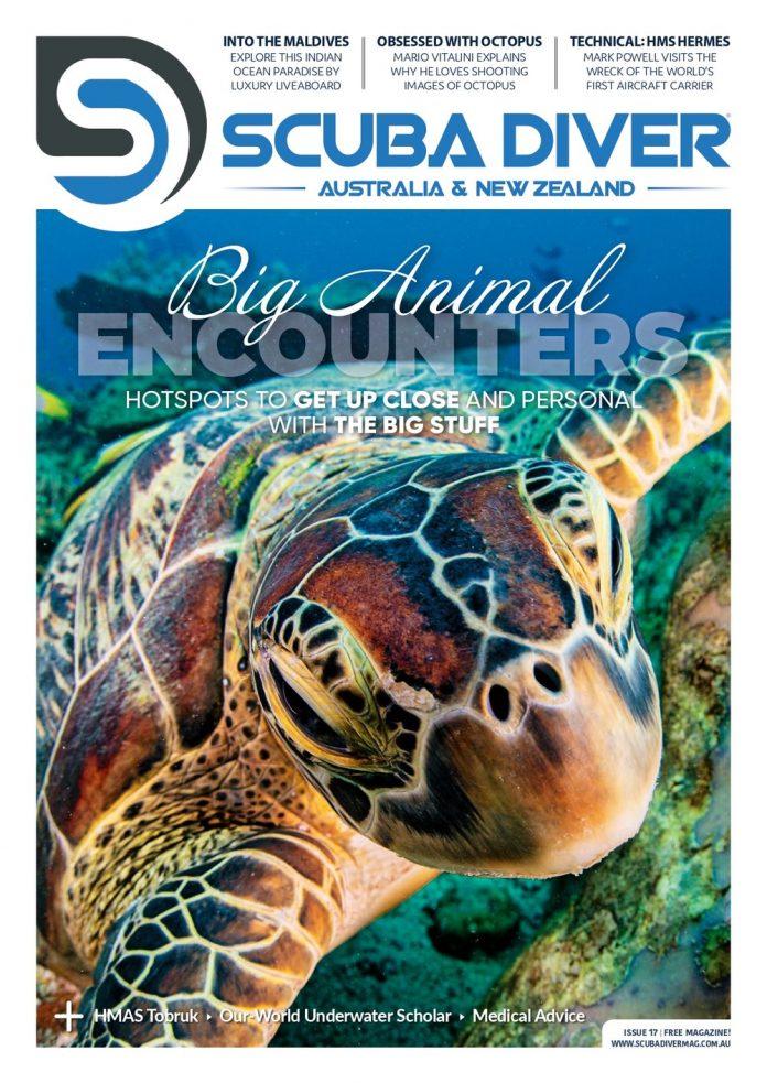 Scuba Diver Australia #17