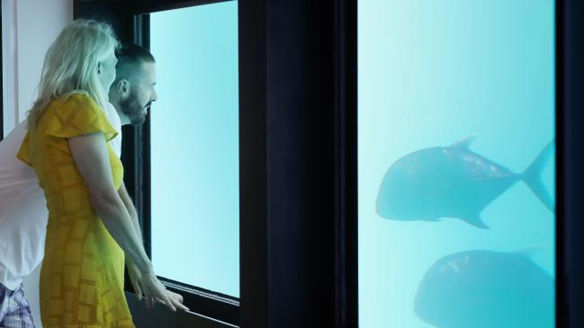 Australia's Great Barrier Reef hosts underwater hotels reef suites