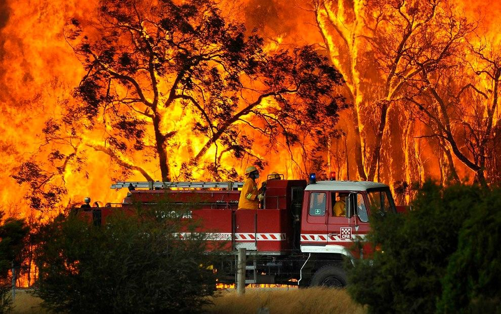 Australian Bush Fires & The Impact they are having on our Oceans & Waterways.