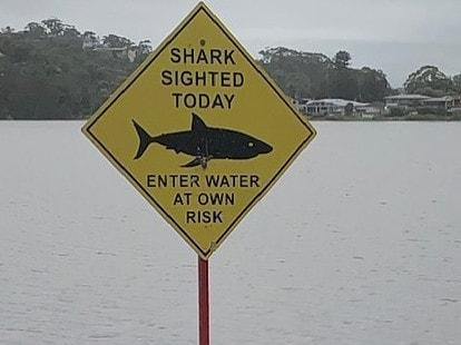 Welcome Rain, Unwelcome visitors.