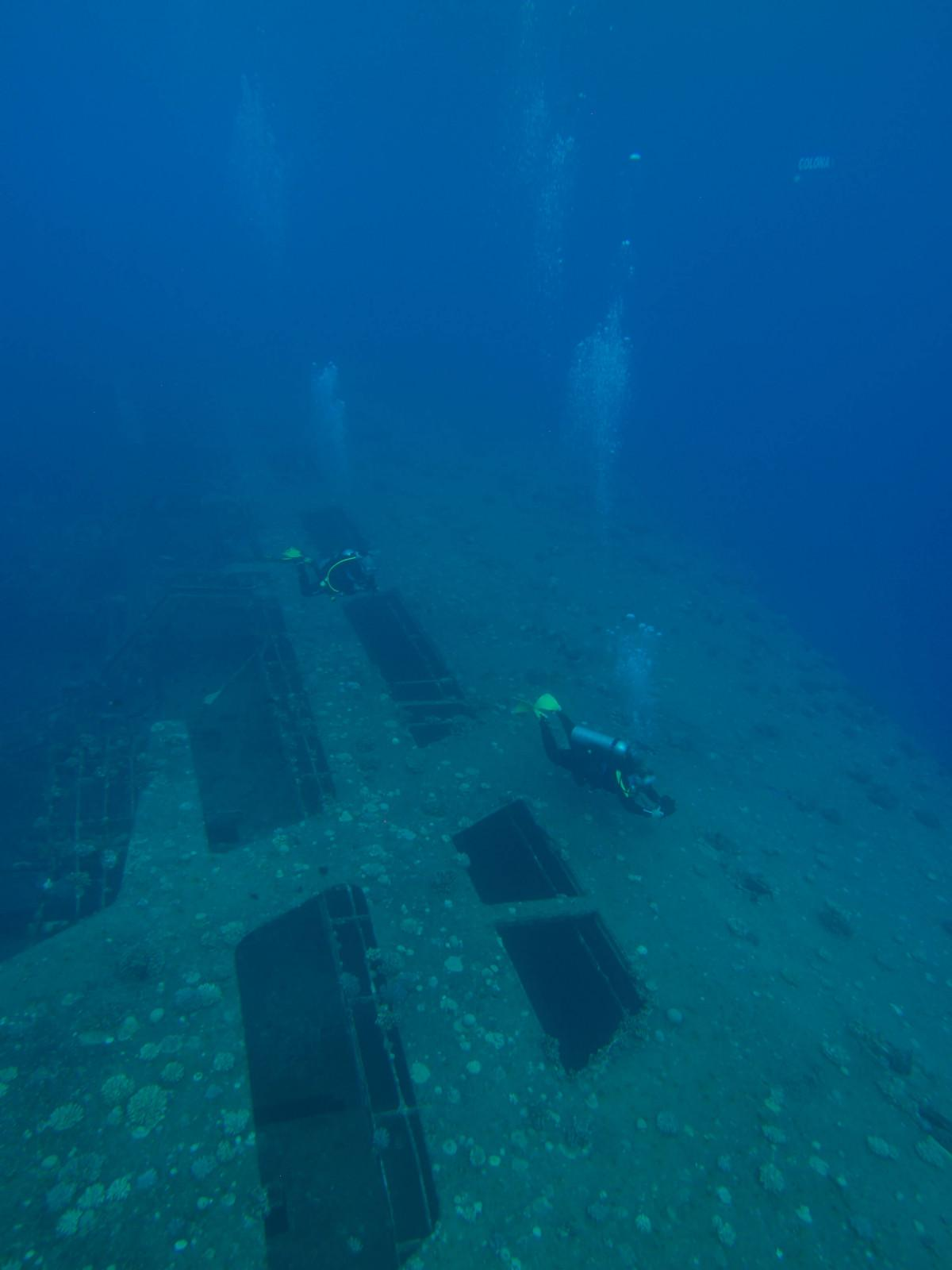 10 reasons to dive the Egyptian Red Sea (3)