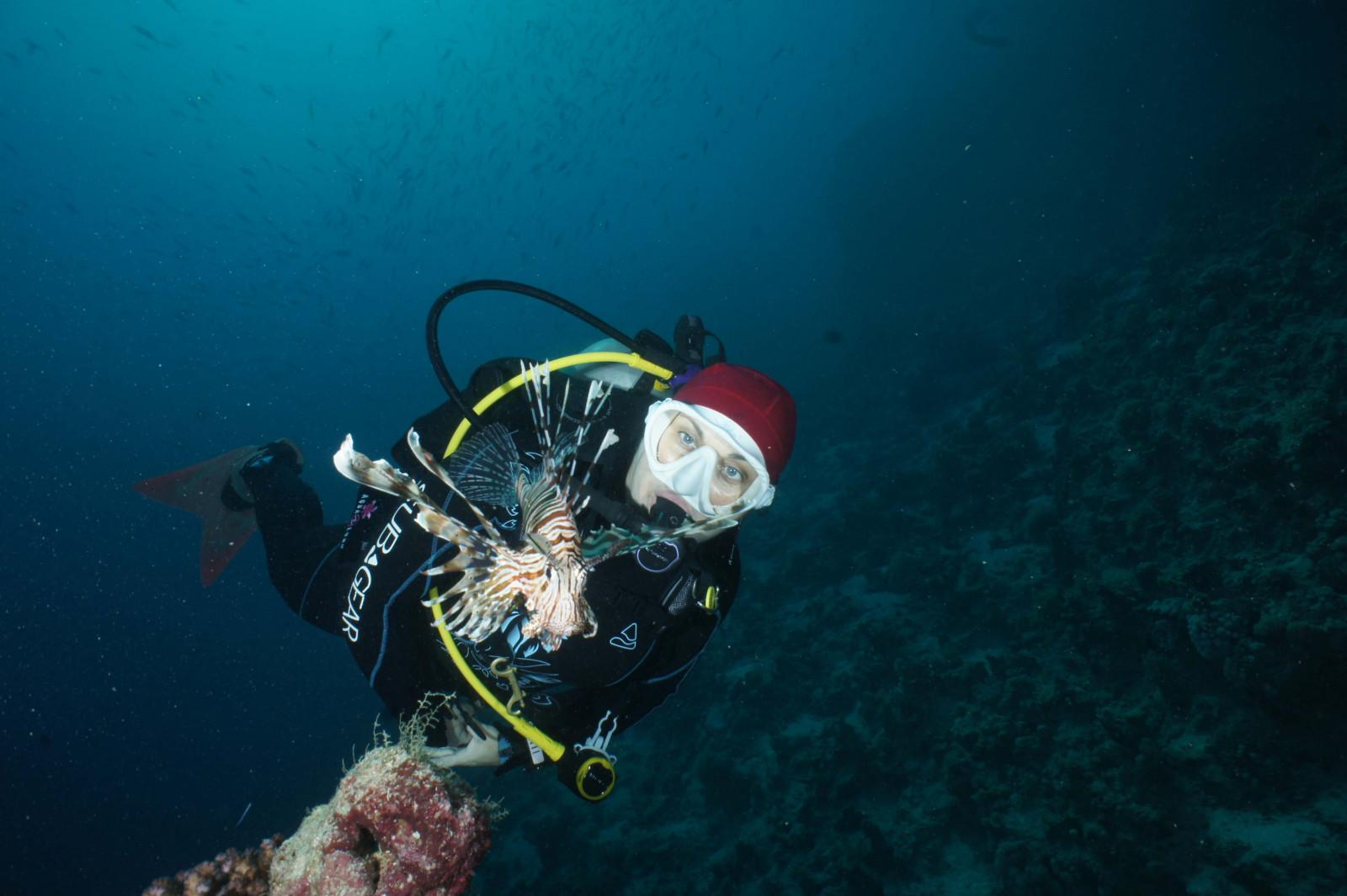 10 reasons to dive the Egyptian Red Sea (7)
