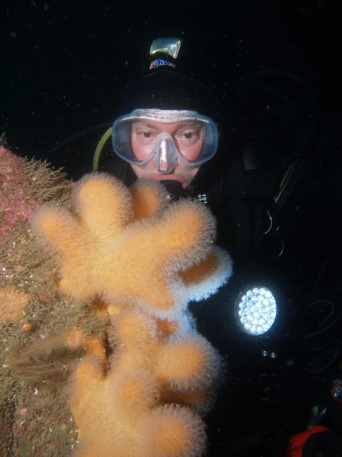 Scuba Dive at Drawna Rocks (6)