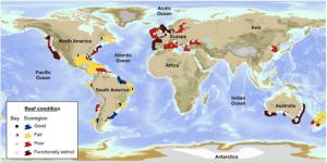 World Map of Shell Fish Reefs