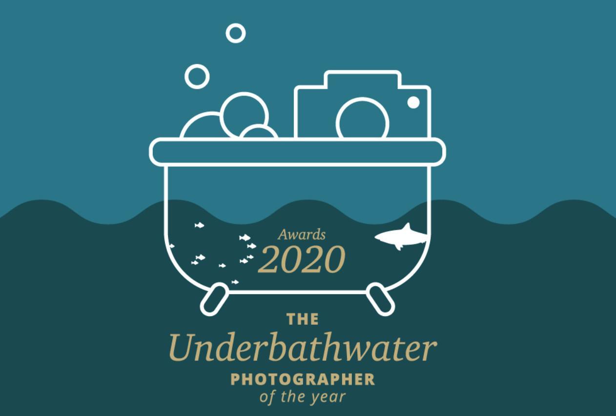 Underbathwater photographer of the year