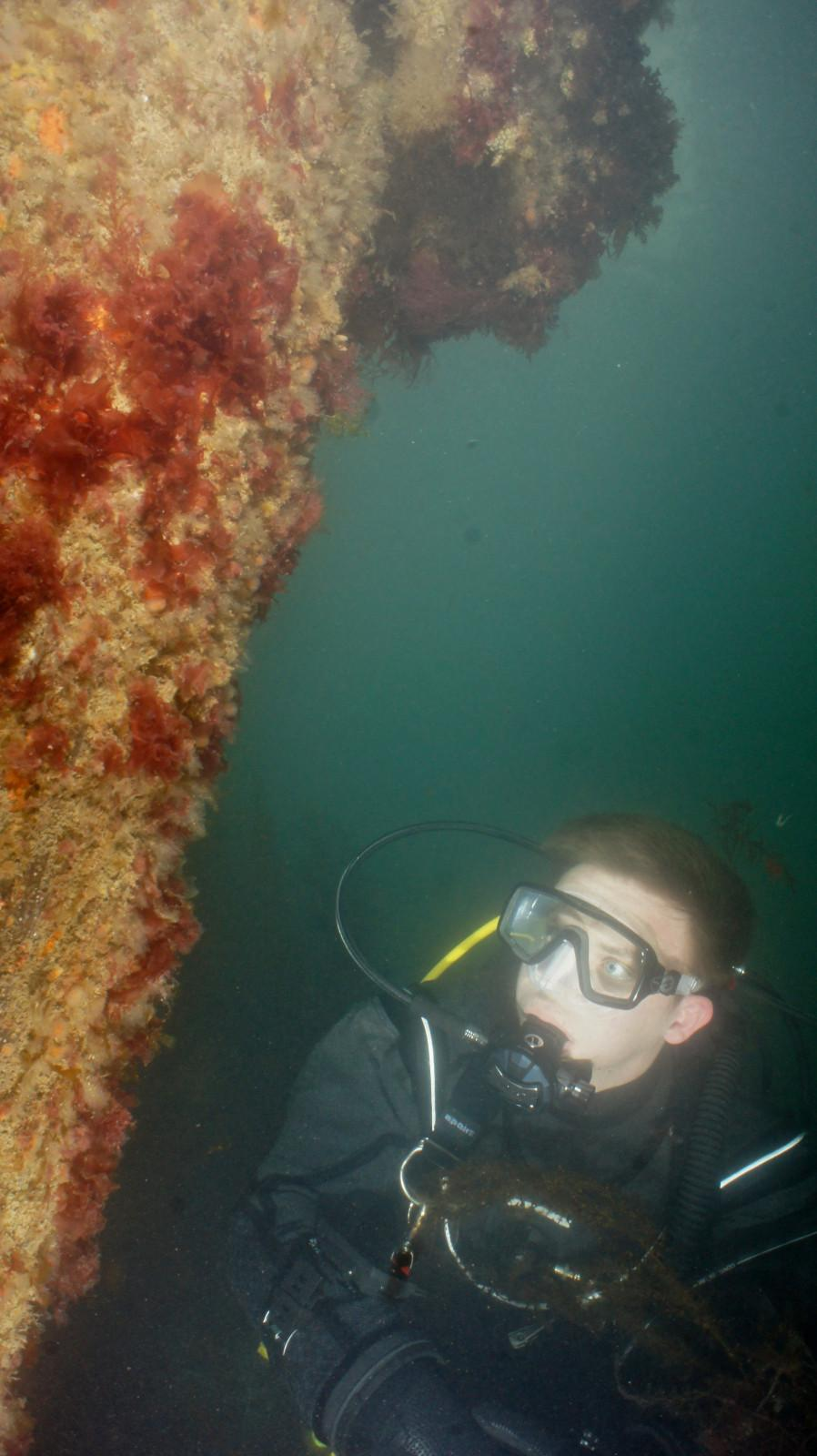 Australias Coral Coast 1