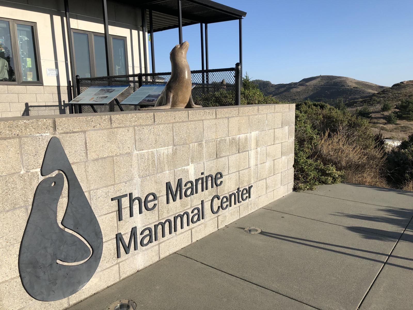 The Marine Mammal Centre