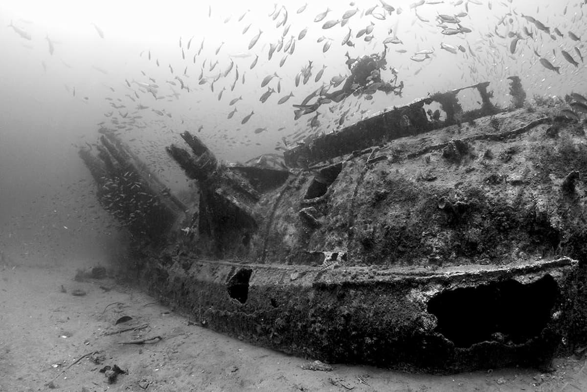 U-352 - North Carolina's World War II Shipwreck
