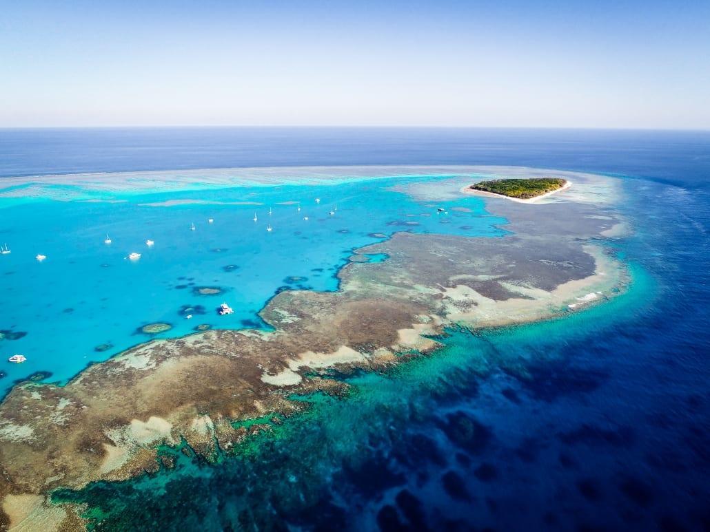 10 Amazing Underwater Documentaries