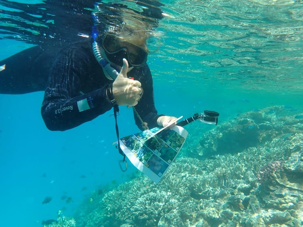 Conserving the Reef - Lady Musgrave Experience.