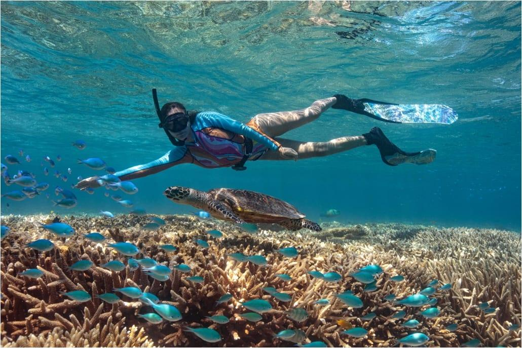Protecting the Reef Ecosystem – Lady Musgrave Experience