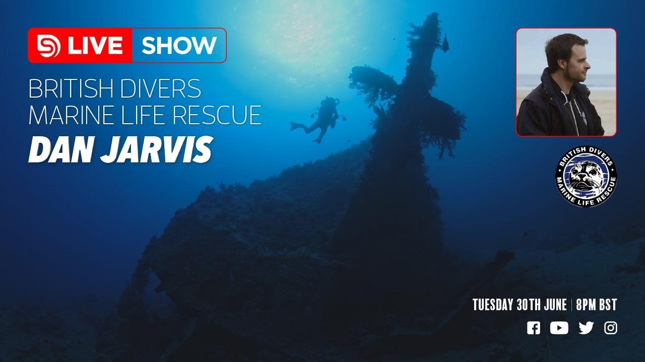 Scuba Diver Live