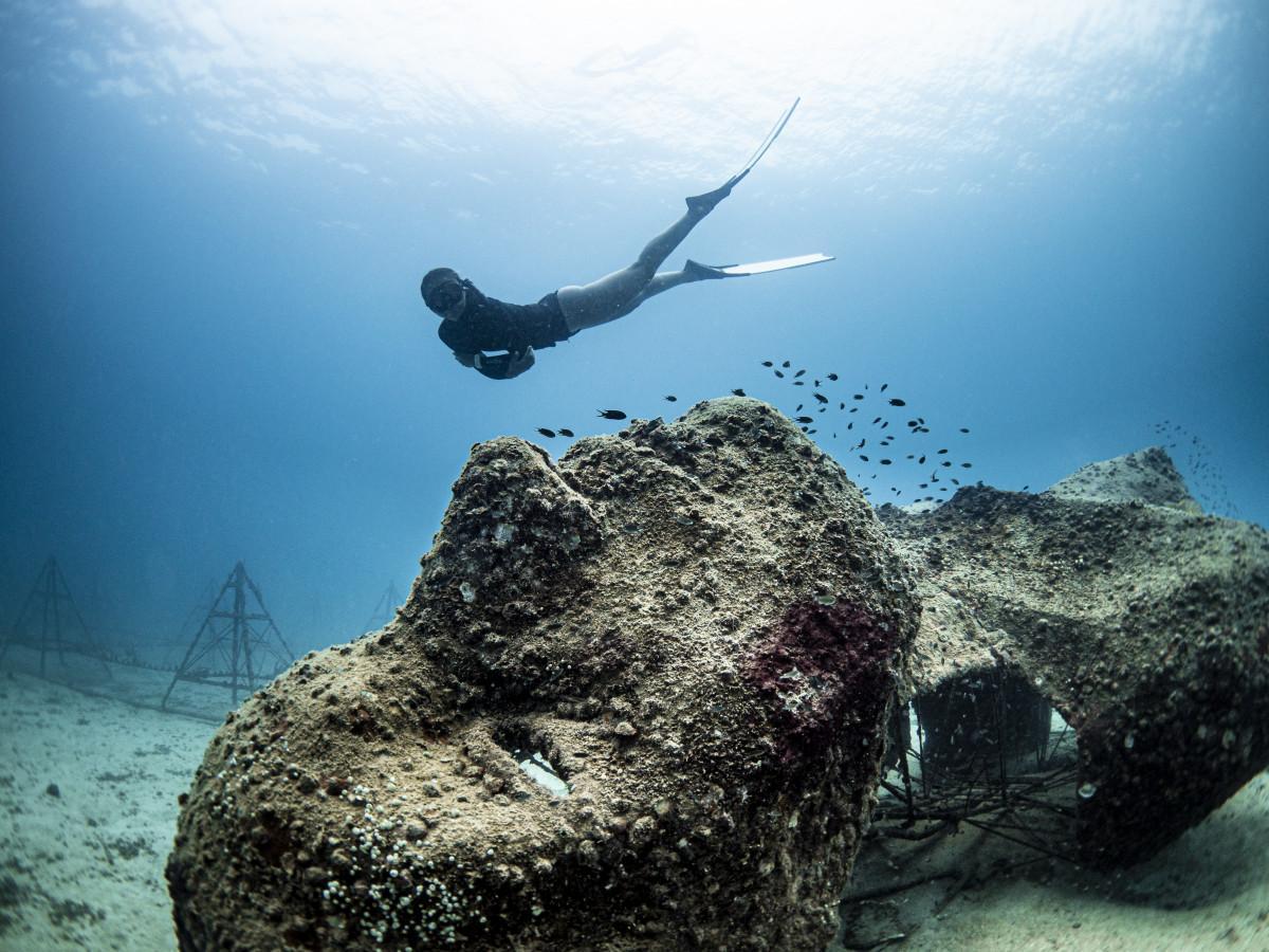 Top 5 Dive Sites of Koh Tao