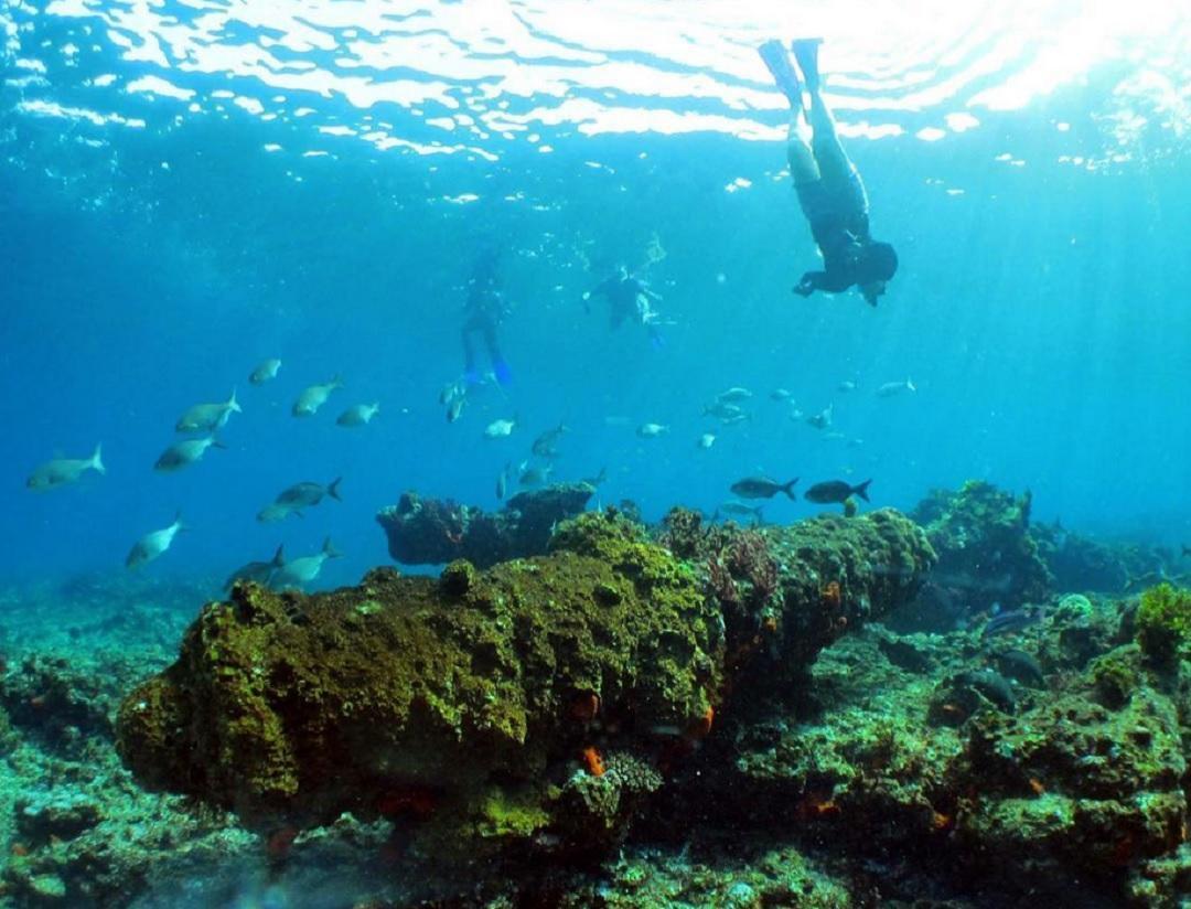 Wrecks of Australias Coral Coast