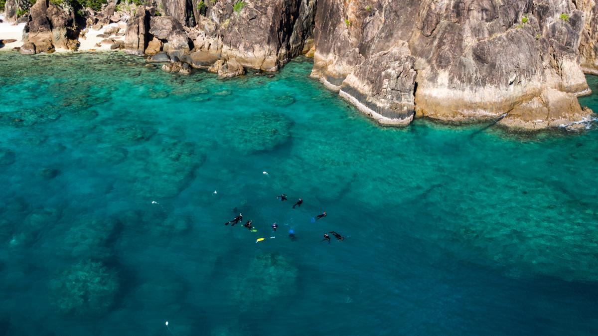 Tourism operators help plant 1000 corals