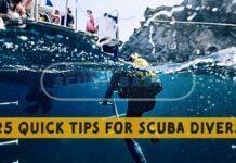 25 Quick Tips for Scuba Diver