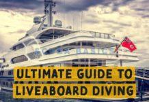 Ultimate Guide to Liveaboard Diving