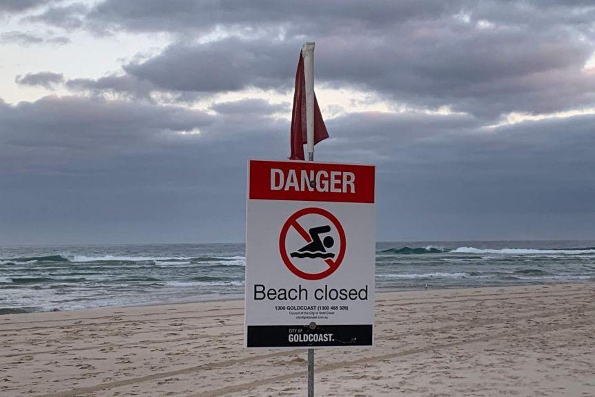 First Gold Coast Shark Attack Fatality in Over 60 Years