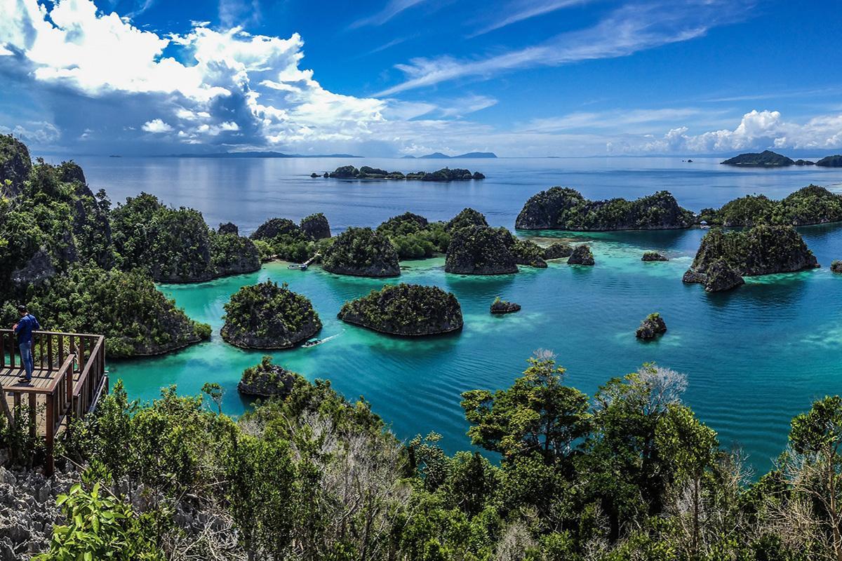 4 Breathtaking Fam Islands Dive Sites