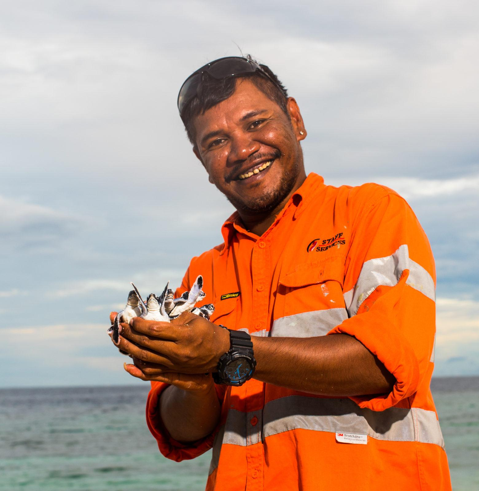 640,000 More endangered Baby Turtles on the Great Barrier Reef