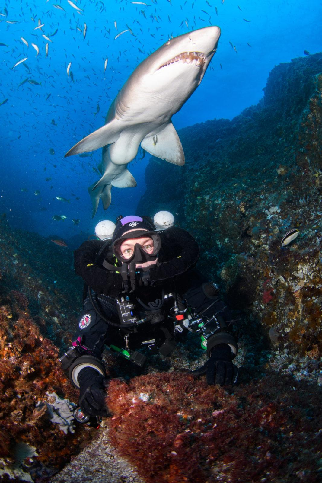 Modelling with Grey Nurse Sharks: Photography Masterclass with Nicolas and Lena REMY
