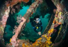 Bali vs Lombok Diving