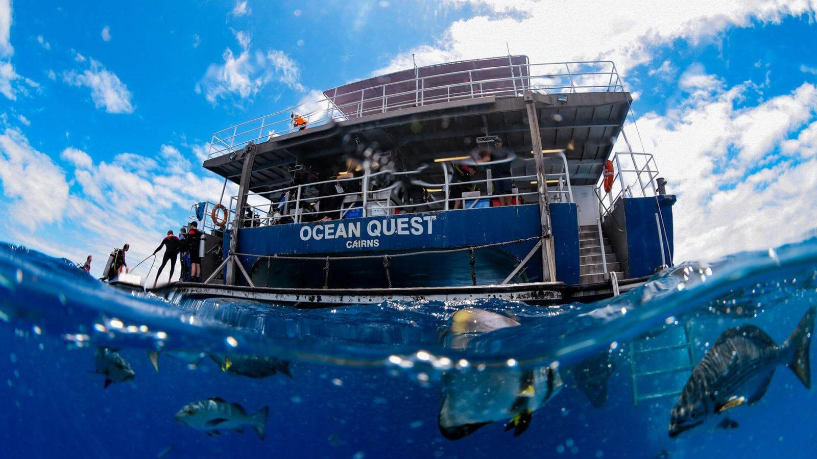 Liveabroad on Ocean Quest Cairns by Divers Den