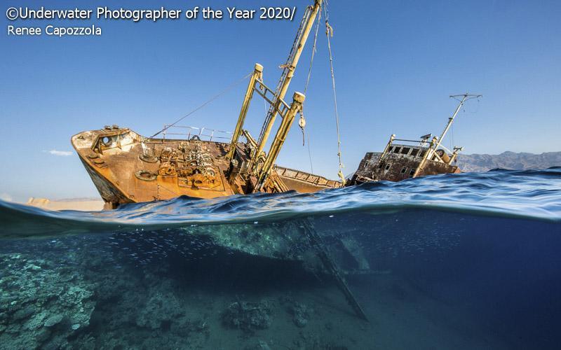 Underwater Photographer of the Year