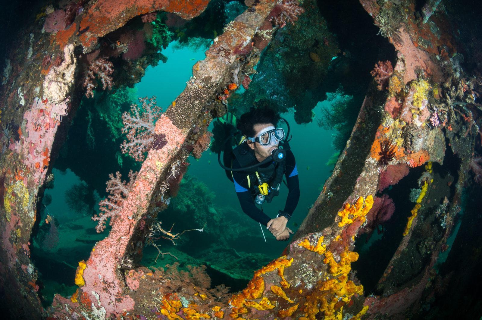 Bali Tulamben Liberty Diver