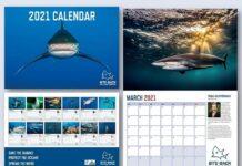 Bite Back 2021 Calendar