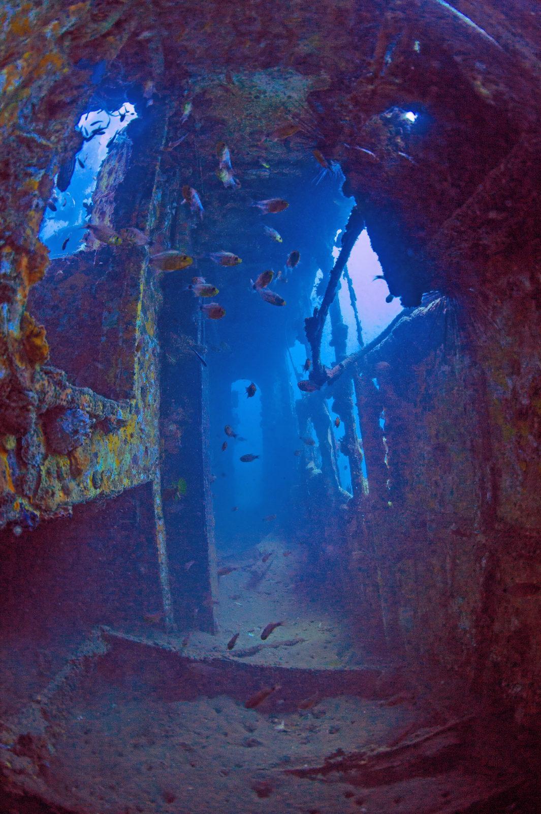 Where Rainforest Meets Reef the Stunning Tunku Abdul Rahman Park