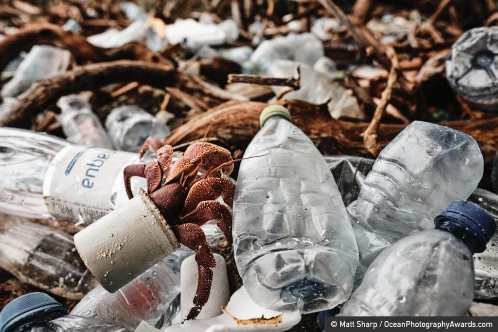A hermit crab crawls atop a pile of plastic in a shell made from manmade waste. Photographed on the small island of Thanburudhoo in the Maldive, photographer Matt Sharp