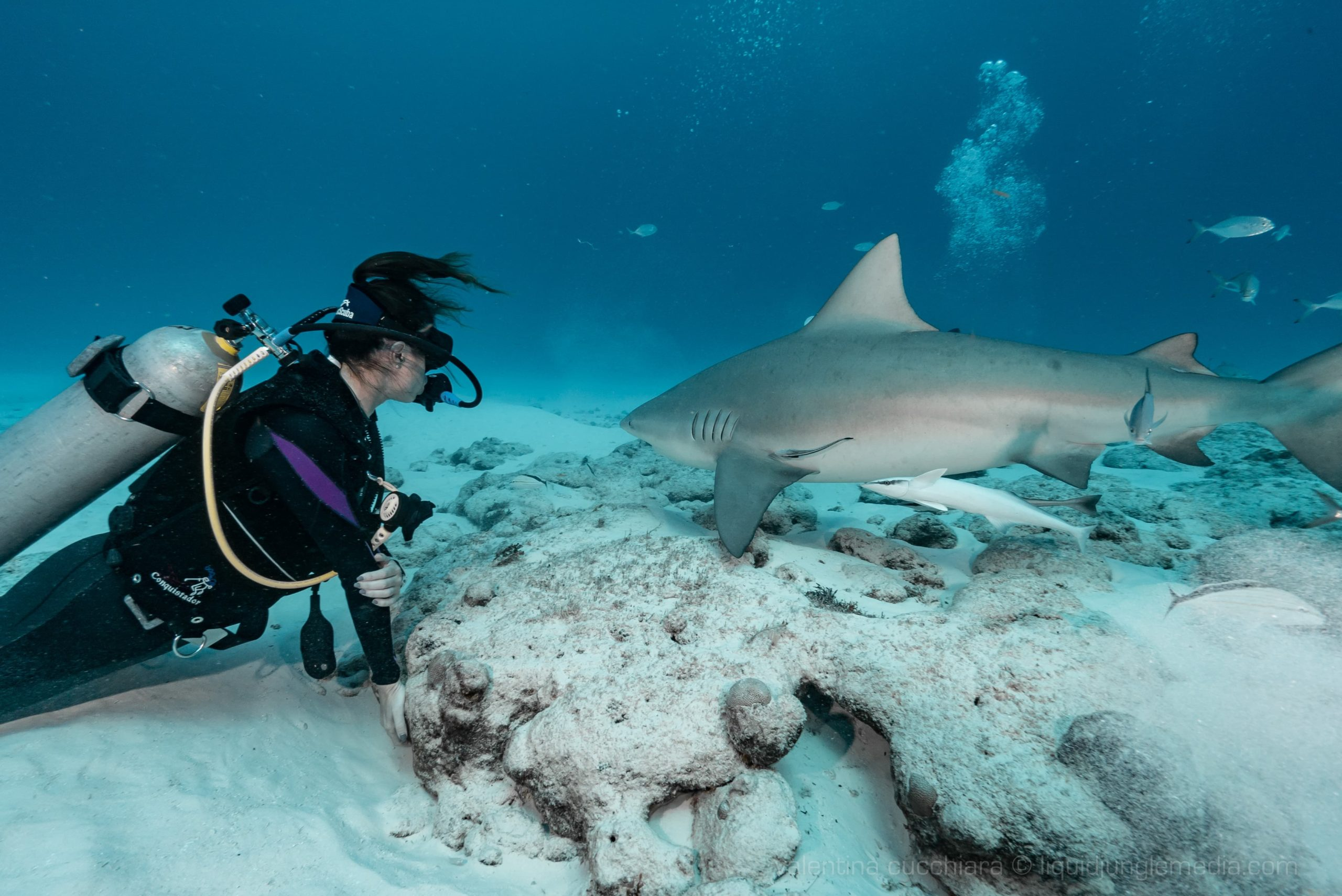Girls that Scuba with shark during that backpacking trip in Panama