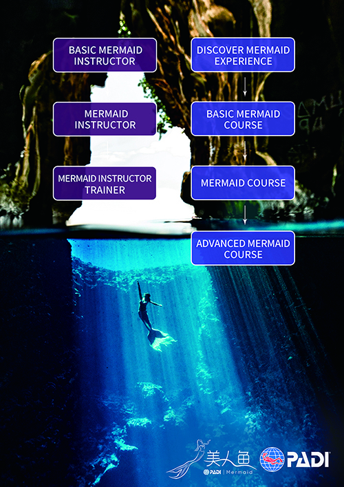Mermaid Course Flowchart