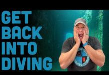 5 tips for getting back into scuba diving