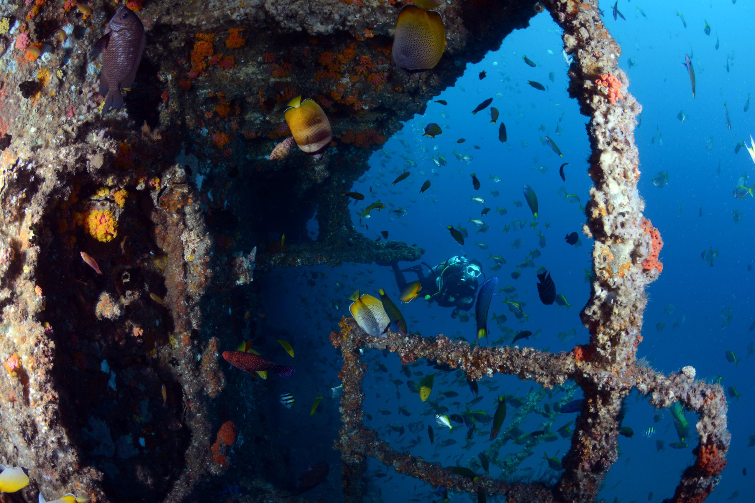 Breathtaking Ex HMAS Brisbane Trip report
