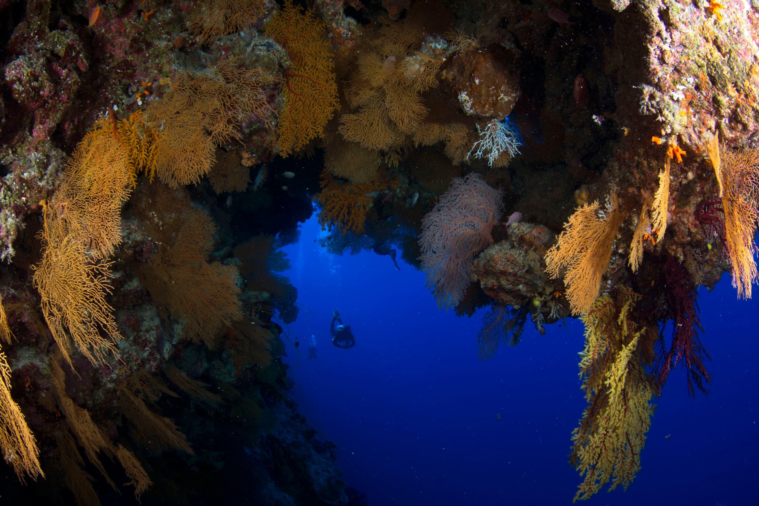 Snaking sandy gullies cut a path through hard coral-encrusted ridges