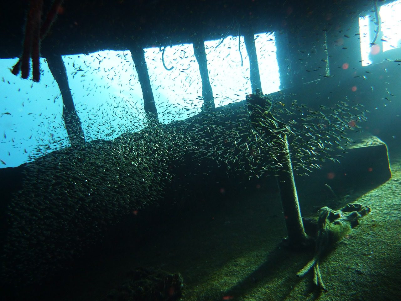 Red Sea Diving Wreck