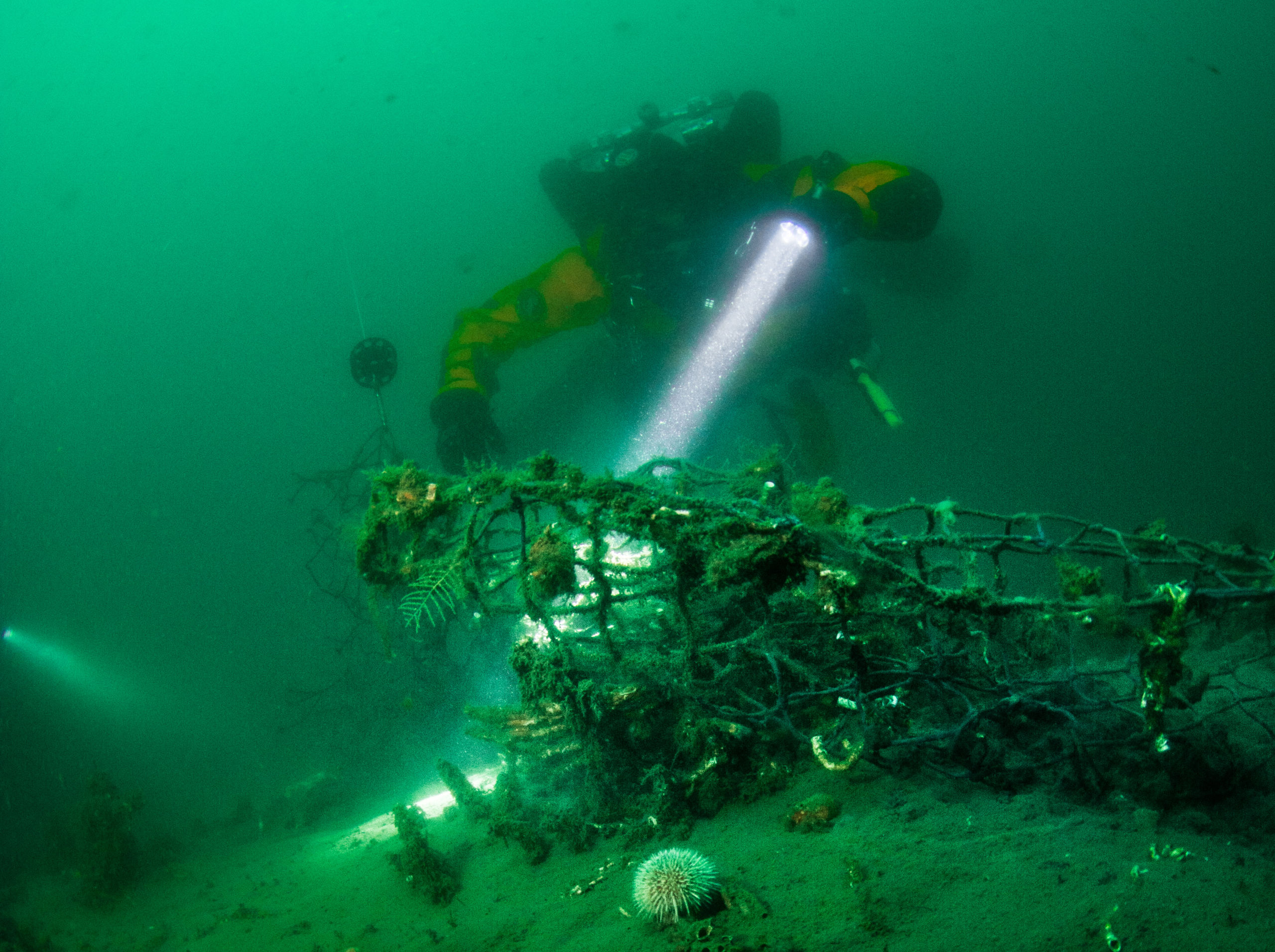 Sarah Tallon Ghost Diving