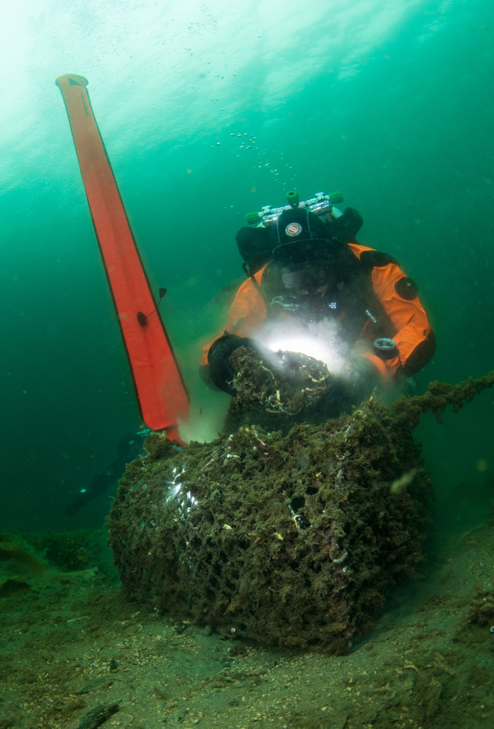 Sarah Tallon, Ghost Diving