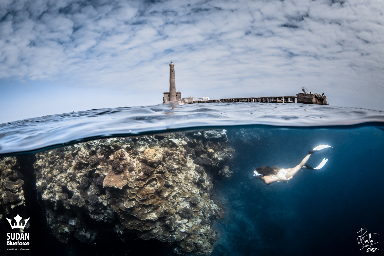 Scuba Diving Sudan Shark Dive Expedition
