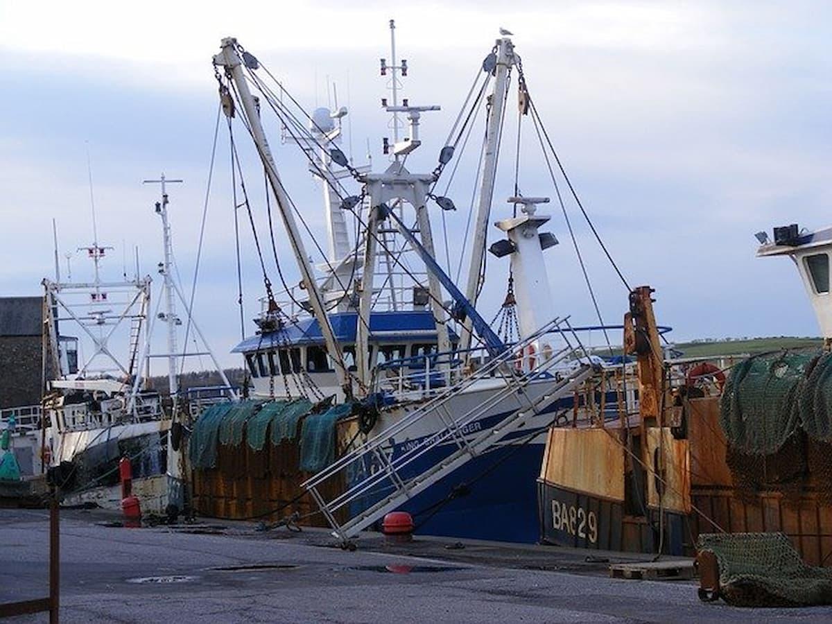 bottom trawling ban