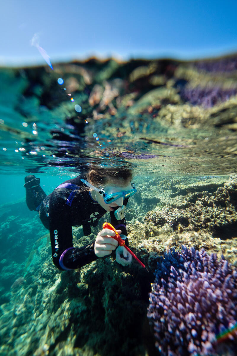 Remarkable Marine Biologist Cliona O'Flaherty