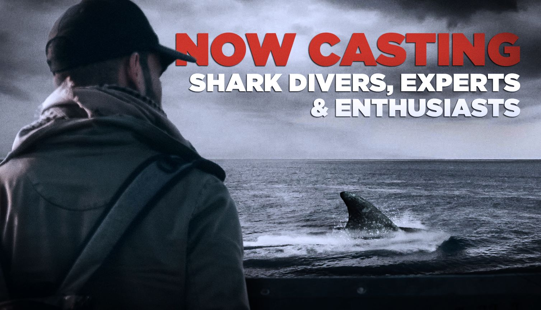 sharks casting